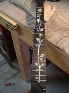 all fretted up!